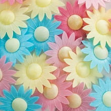 Pre-cut Edible Wafer Paper Daisies