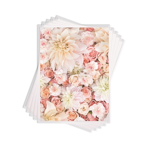 Merengue Transfer Sheets 24pk- A4 Size